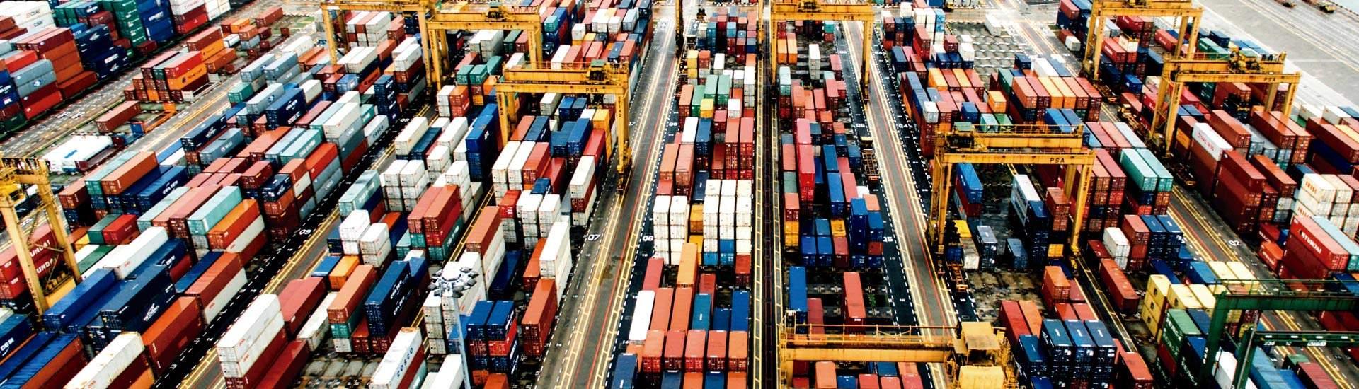 Importación y Exportación - Seegman